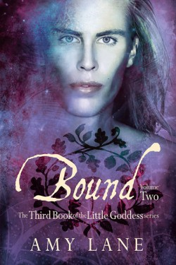 Recent Release Review: Bound, Vol. 2 (Little Goddess Book 3) by Amy Lane