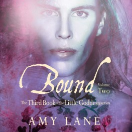 New Release by Amy Lane: Bound, Vol. 2
