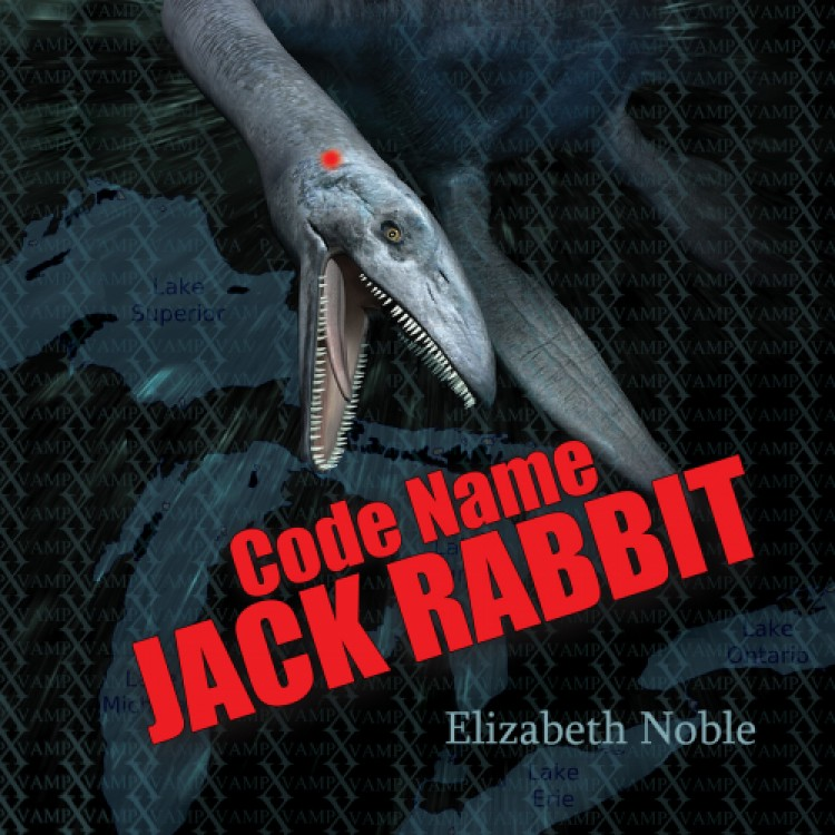 4.5 Stars for Code Name Jack Rabbit