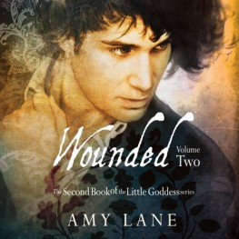 New Release: Wounded, Volume 2